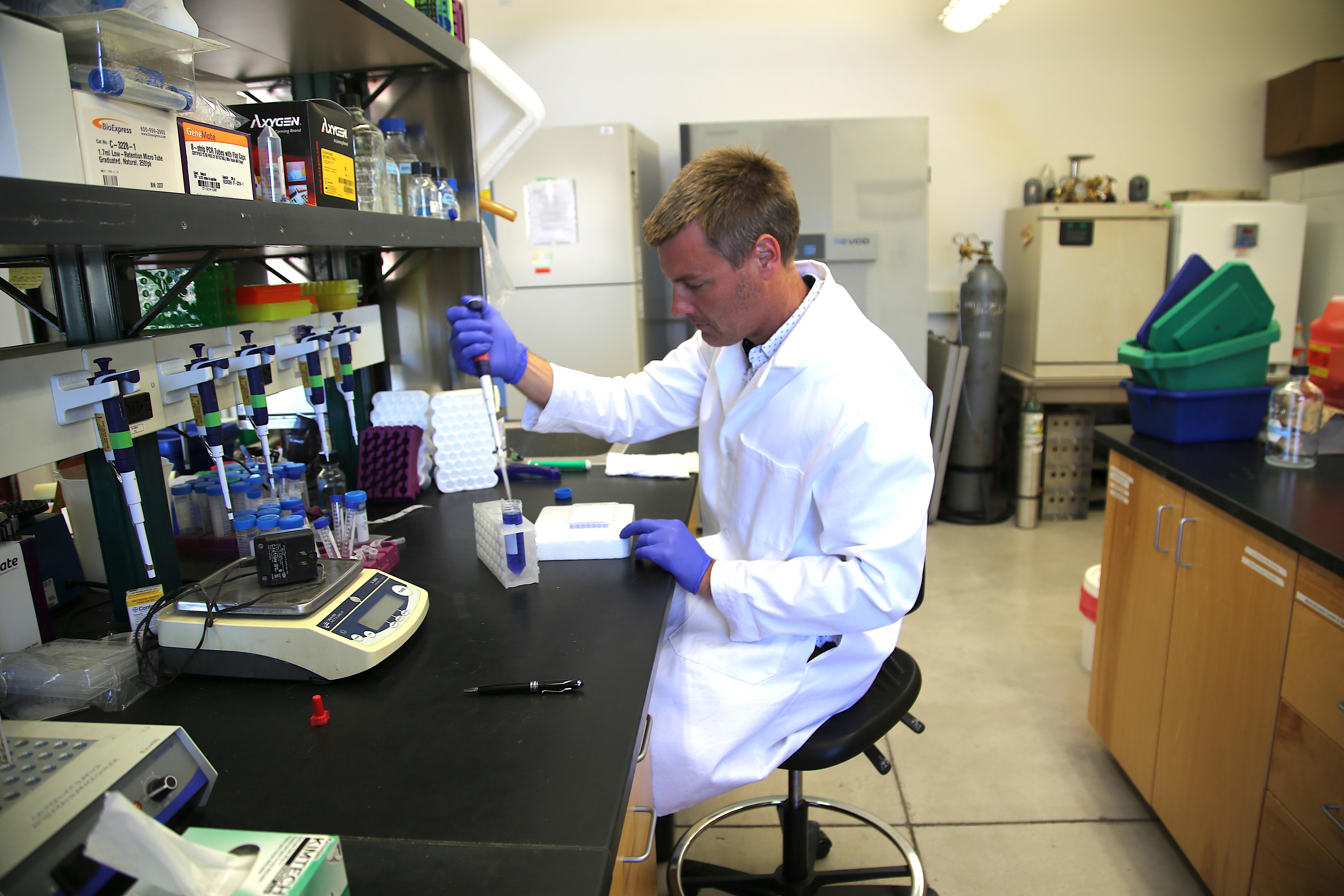 Benjamin Renquist, PhD